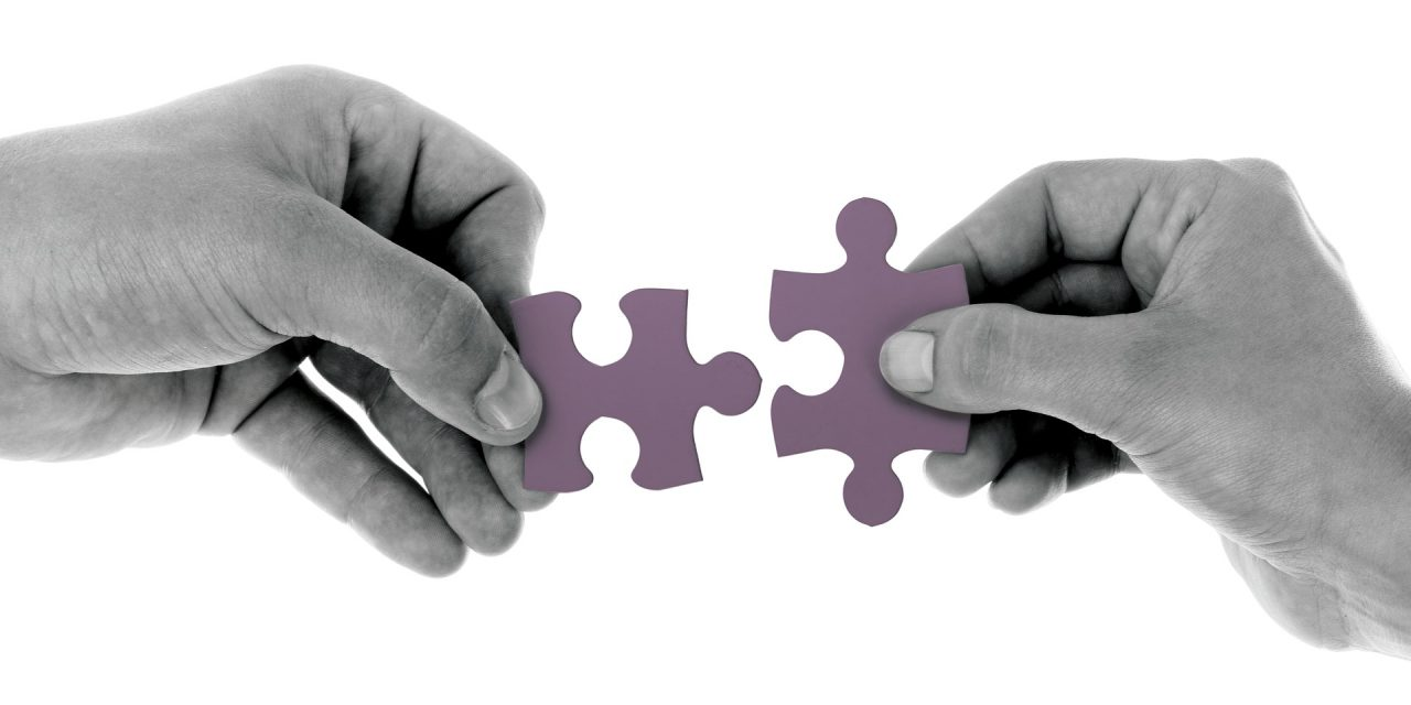 Donodoo in partnership con iRaiser